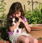 Mia puppy